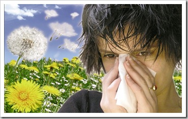 alergia remedios naturales