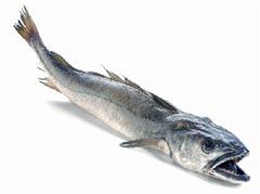 pescado azul para colesterol