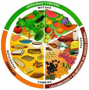 hipercalorica dieta
